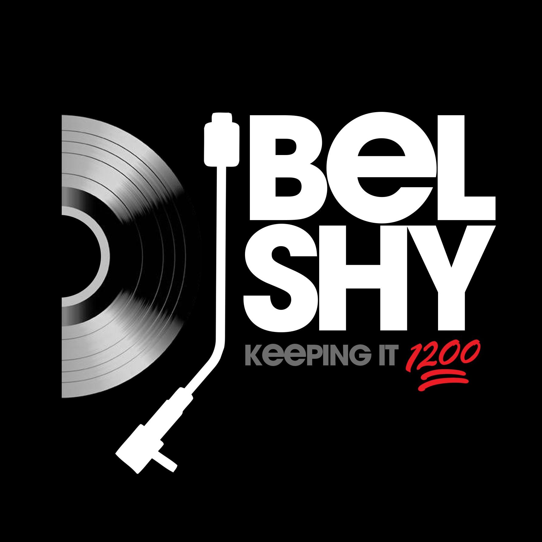 Belshy 501 Radio