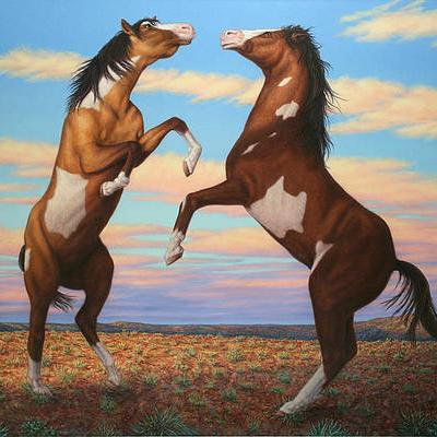 Music for Horses