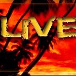 LiveSummer