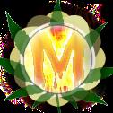 Moty_p's Portal (Test Only)