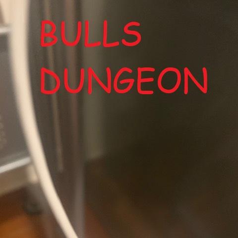 BULLS DUNGEON