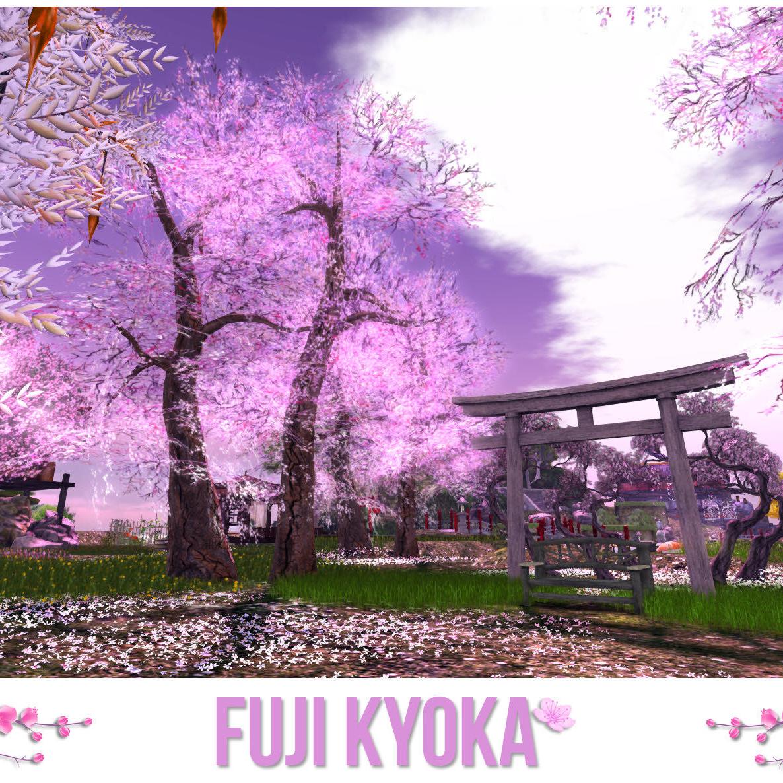 Fuji Kyoka