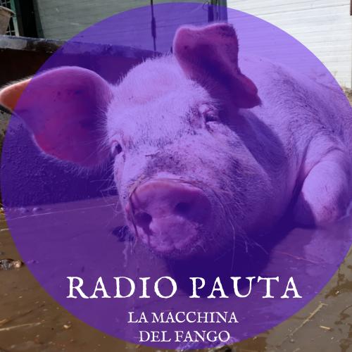 Radio Pauta