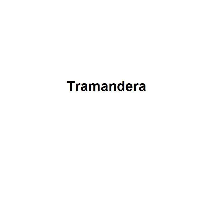 Radiu Tramandera