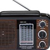 Radio Pichucha