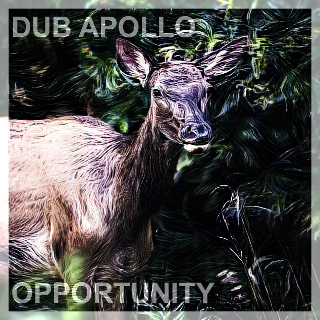 Dub Apollo