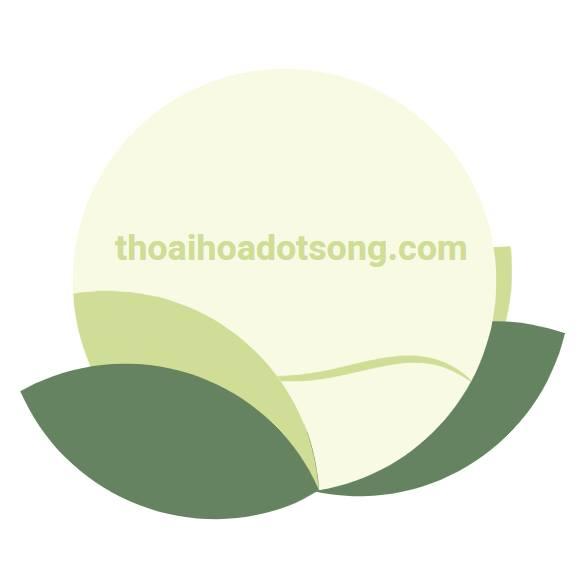 thoaihoadotsongcom