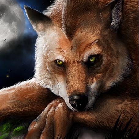 Wolf Radio Server