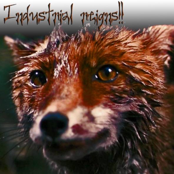 [FoxyIndustry]