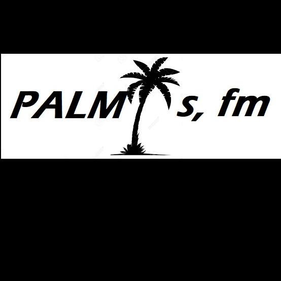 PALMISFM