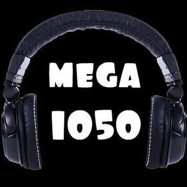 Mega1050  rock