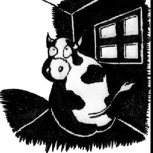 Cow's Corner Radio