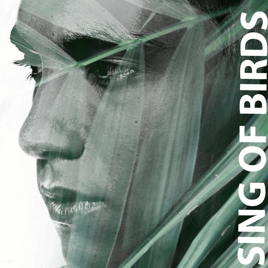 Sing of Birds