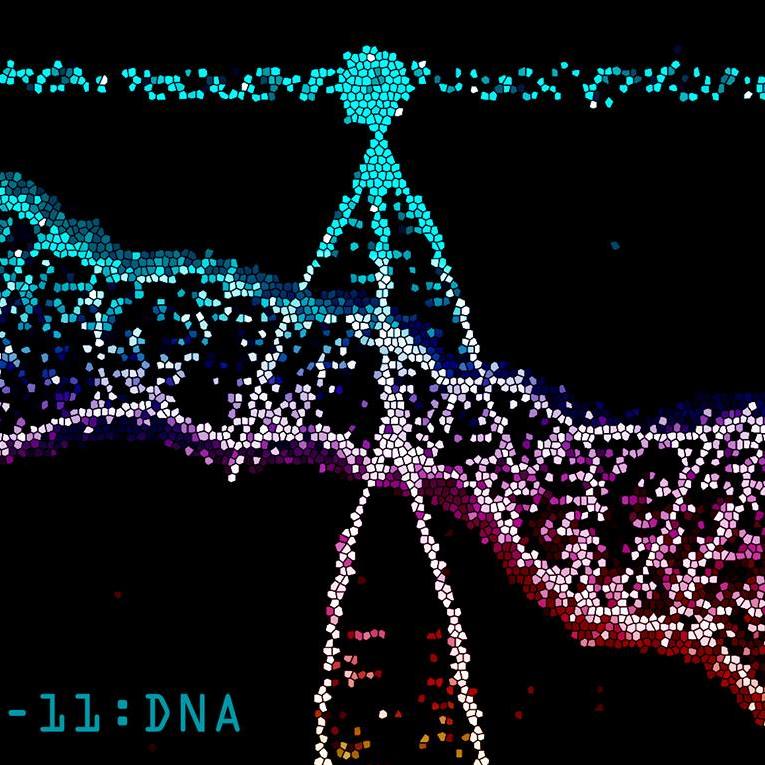 Chill-DNA