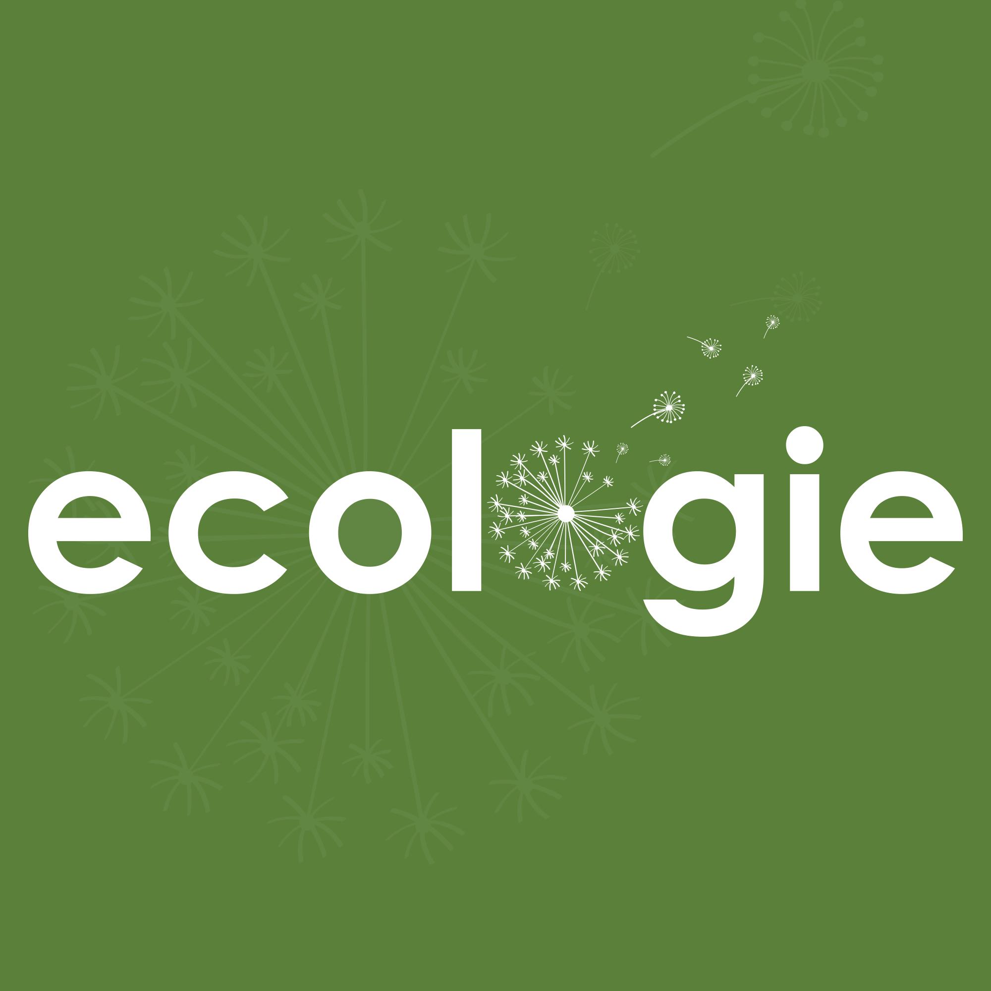 Radio Maroc Ecologie