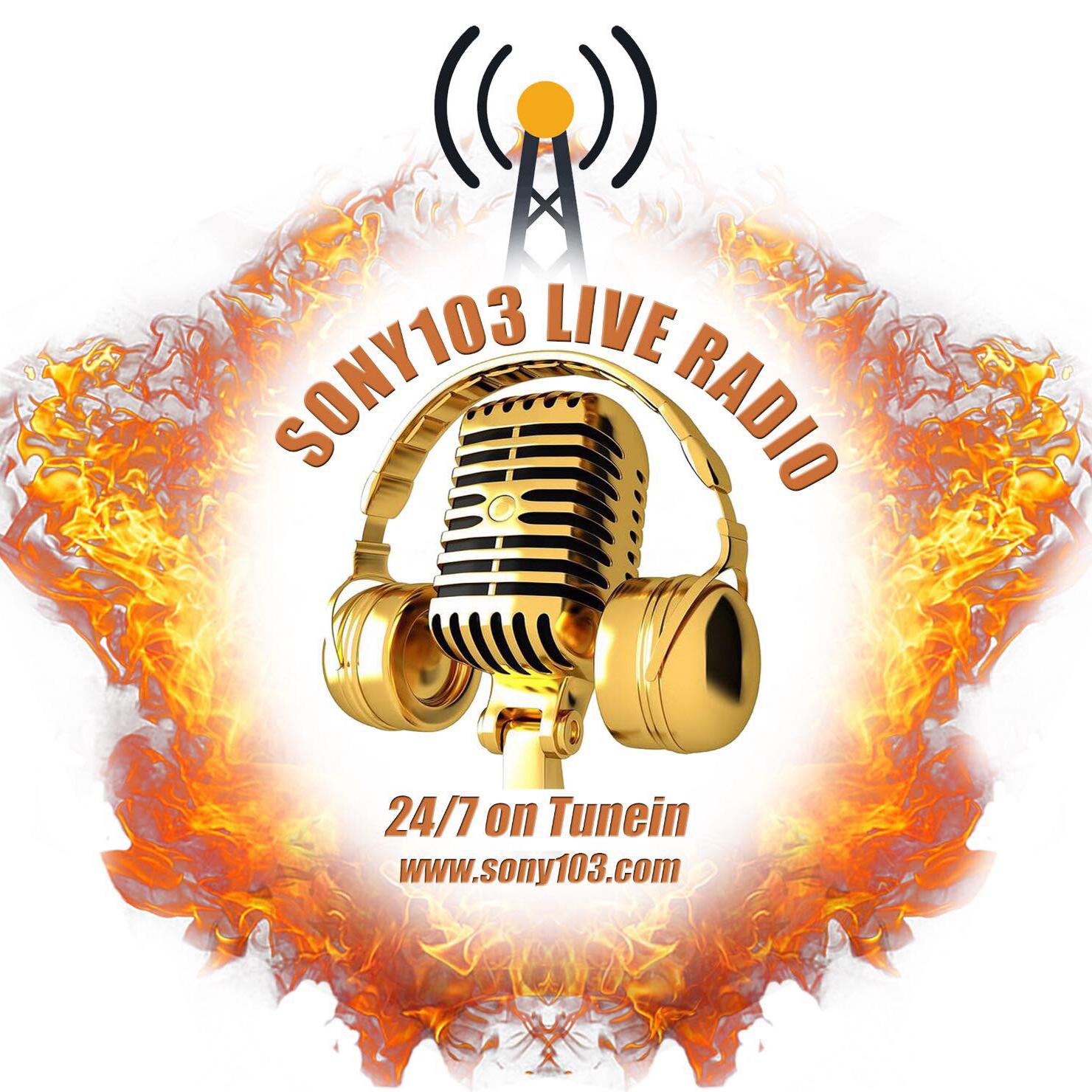 Sony103 FM