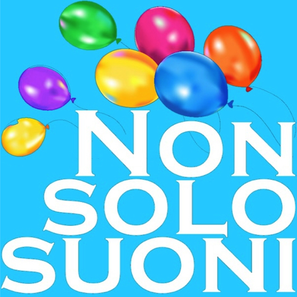 Nonsolosuoni.it