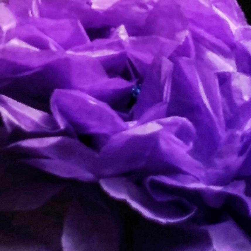 PurpleKisses