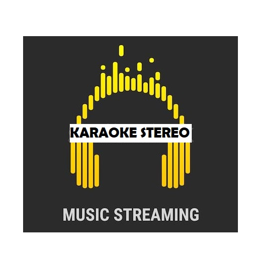 Karaoke Stereo