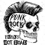 Roc Fm Punkies