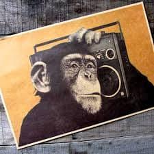 WMKY The Monkey