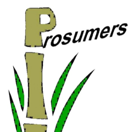 Prosumer emPOWERment Radio, the PPR