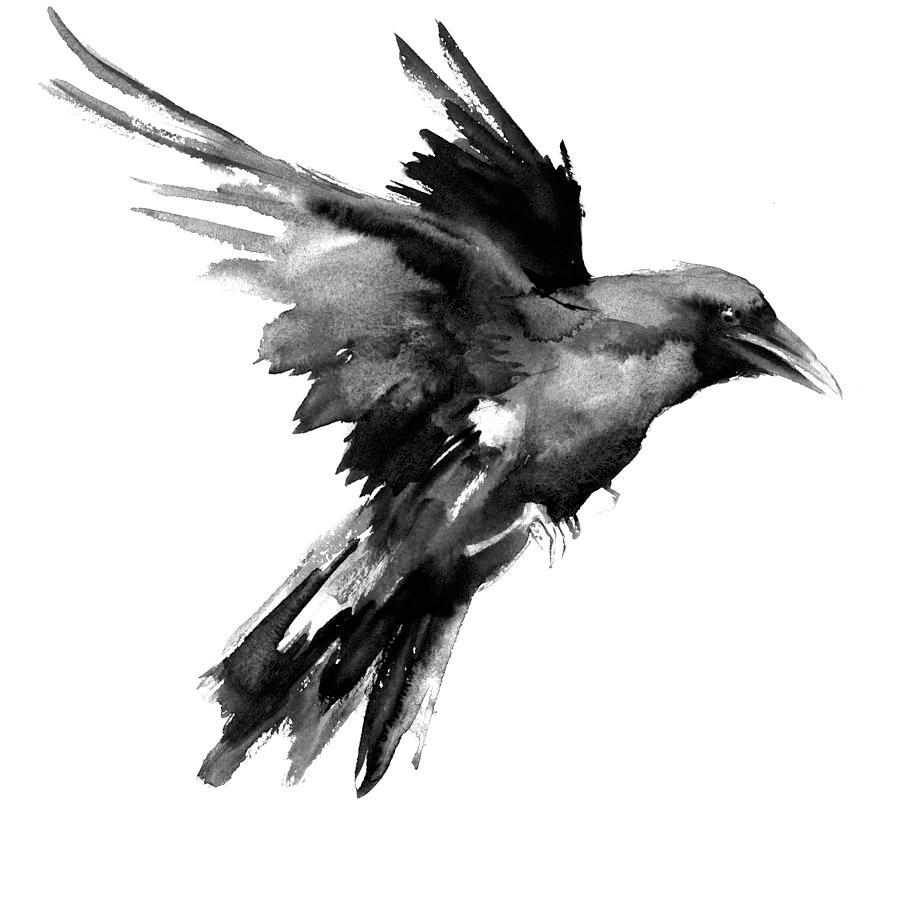 Графические картинки воронов, открытки поздравлением днем