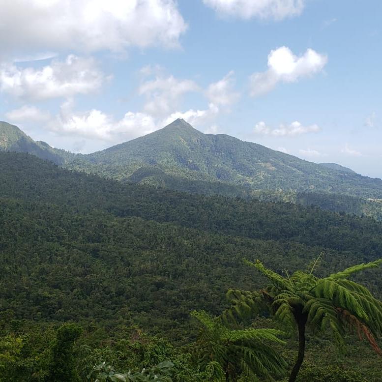 Resilient Radio Dominica