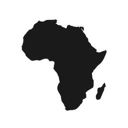 Afrosurvivalism
