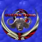 OIJEFON Radio