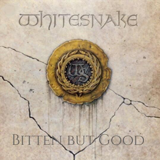 The Face of Music - Whitesnake