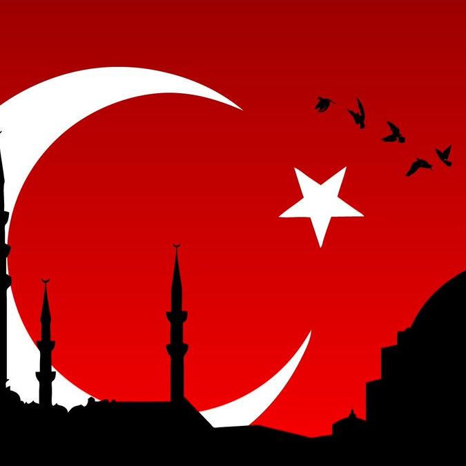 Turkish Global Fans