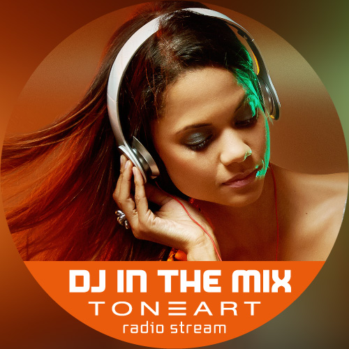 DJ In The Mix by TONEART