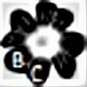 †BlackCLover† Radio