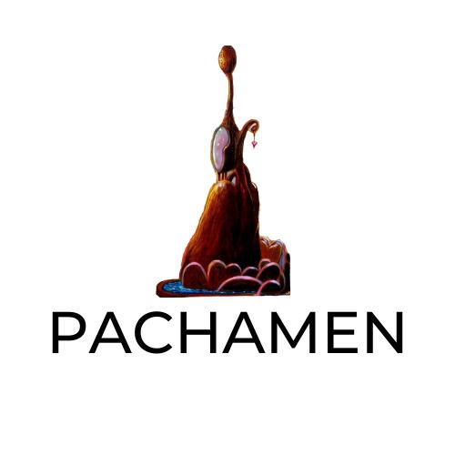Radio PachaMen