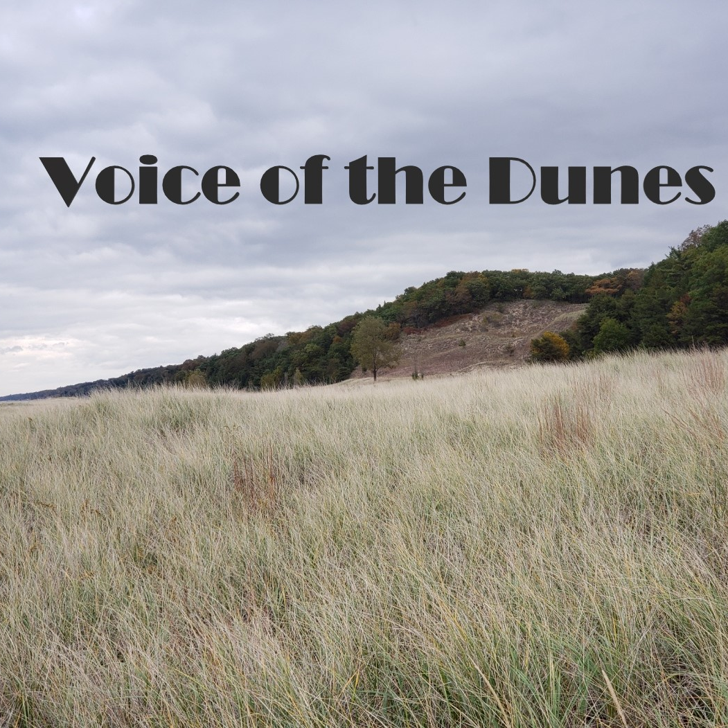 Voice of The Dunes