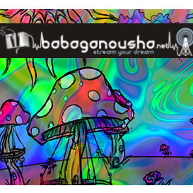 Babaganousha Radio
