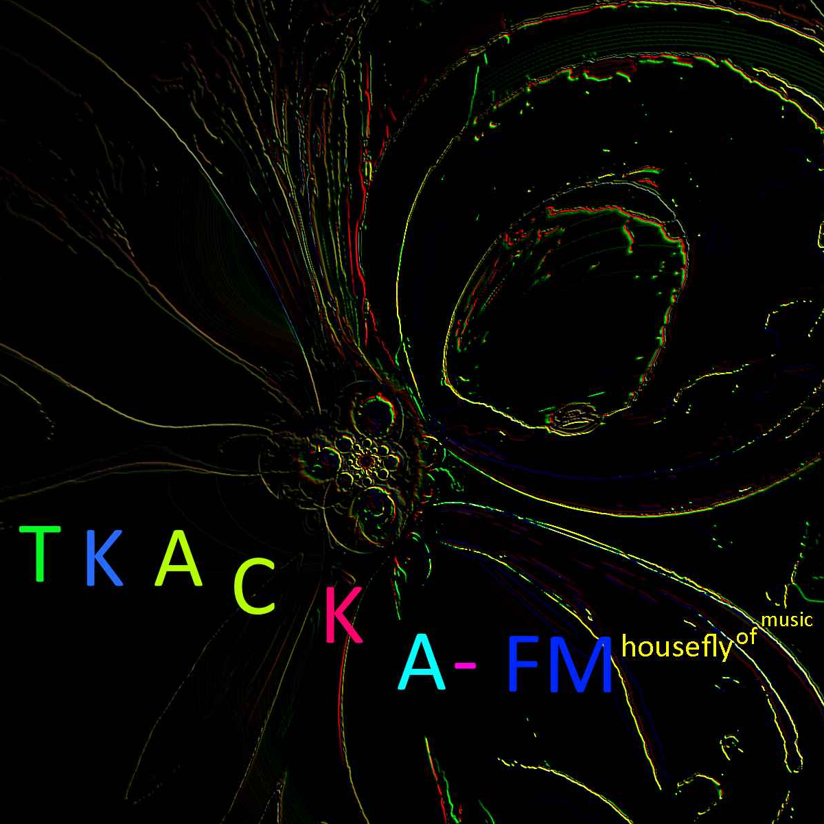 HouseFly-FM