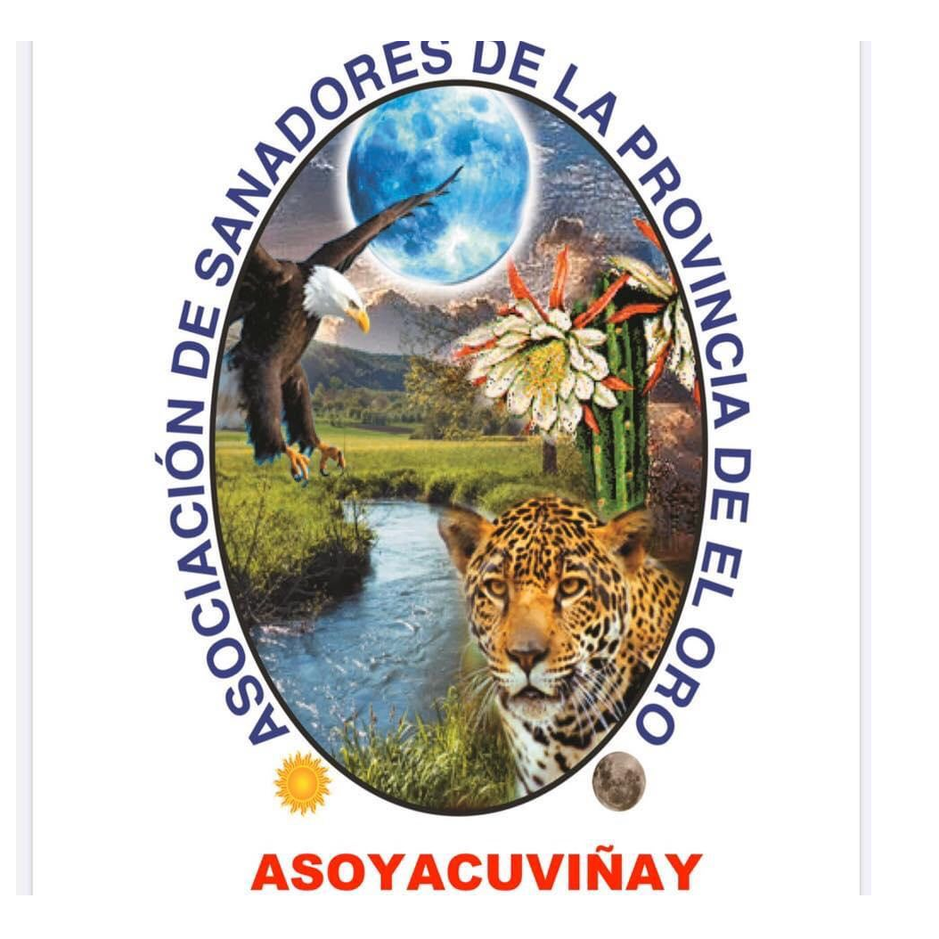 Asoyacuviñay RTV Online