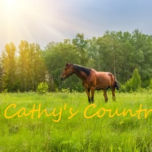 Cathy's Country Music