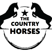 the country horses radio