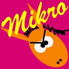 101.1 miKro sound