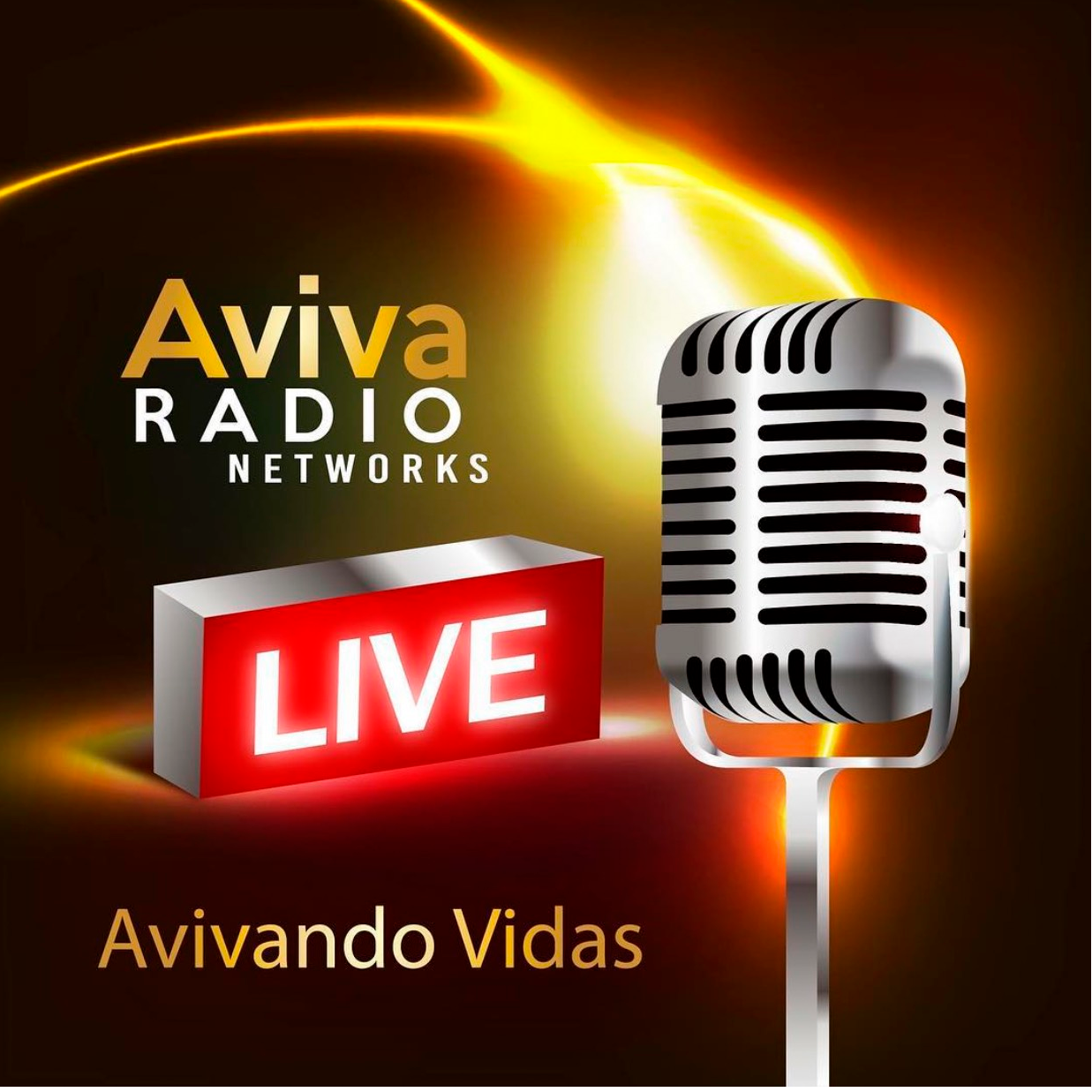 Aviva Radio Networks
