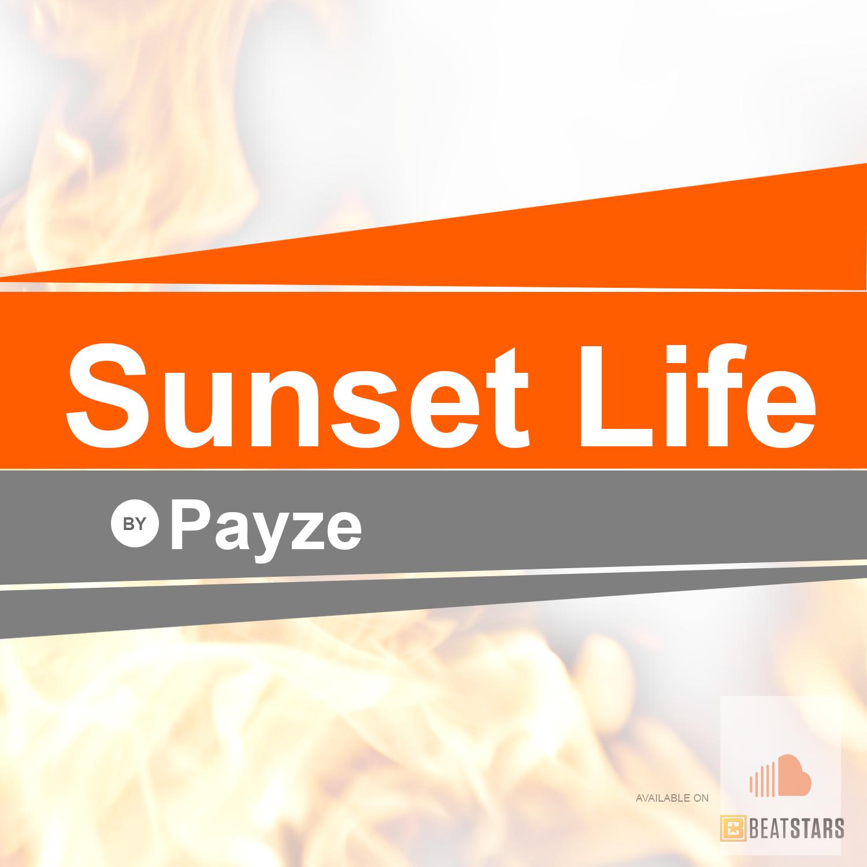 PayzeStation