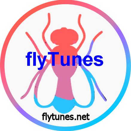 flyTunes