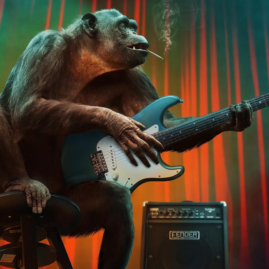 Ez-Monkey Radio