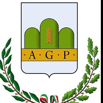 Comune Altavilla Irpina Web Radio
