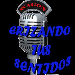 radioWagon