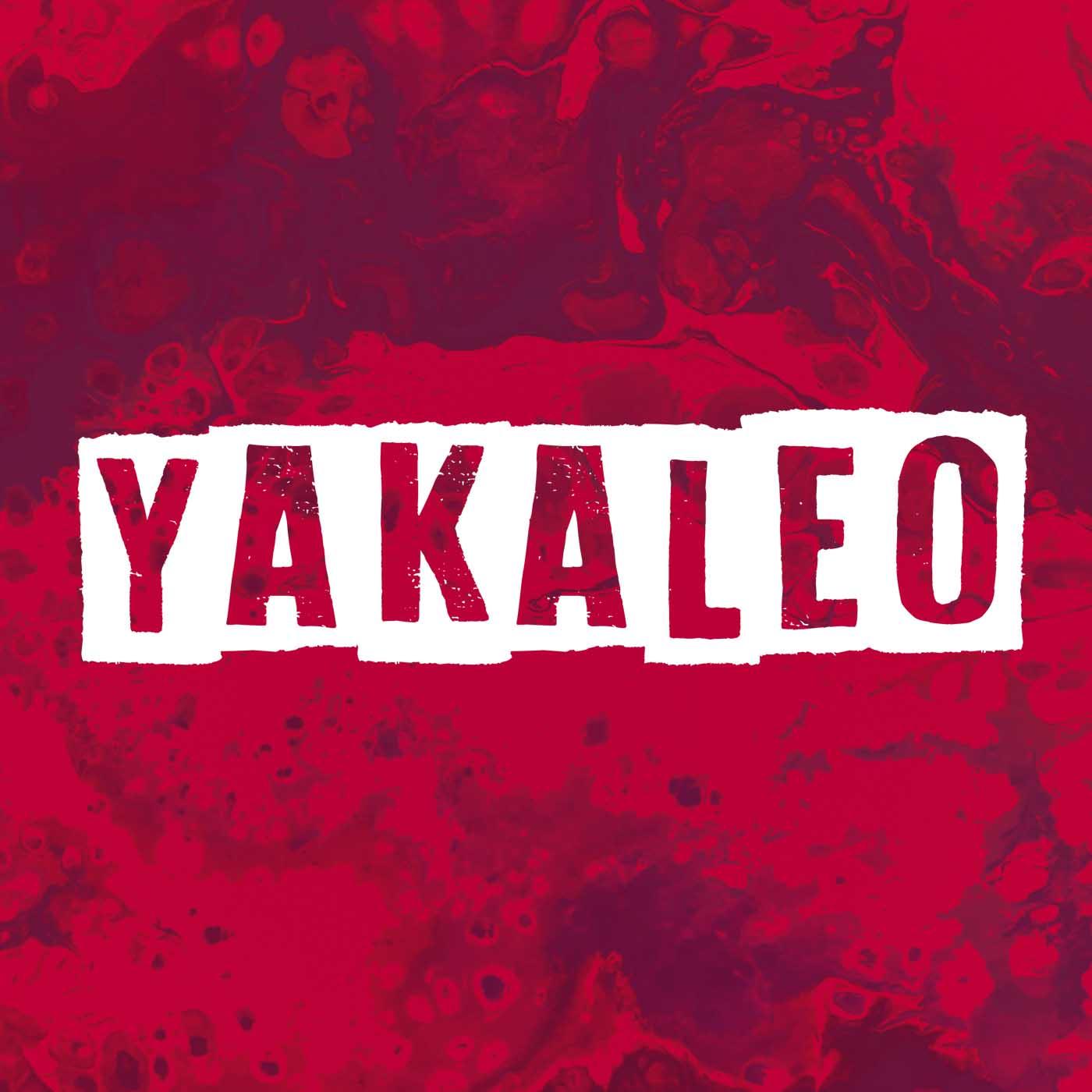 Yakaleo | #1 Reggaeton Exitos | 64k | www.yakaleo.com
