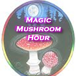 Magic Mushroom Hour with Omega